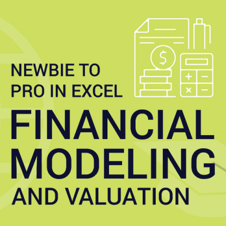 Financial Modeling and Valuation – Newbie to Pro in Excel